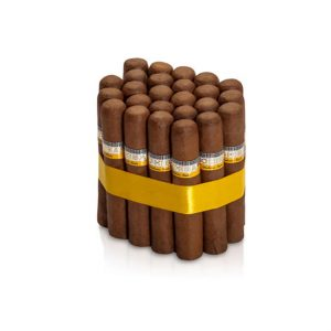 Cohiba robusto cigar