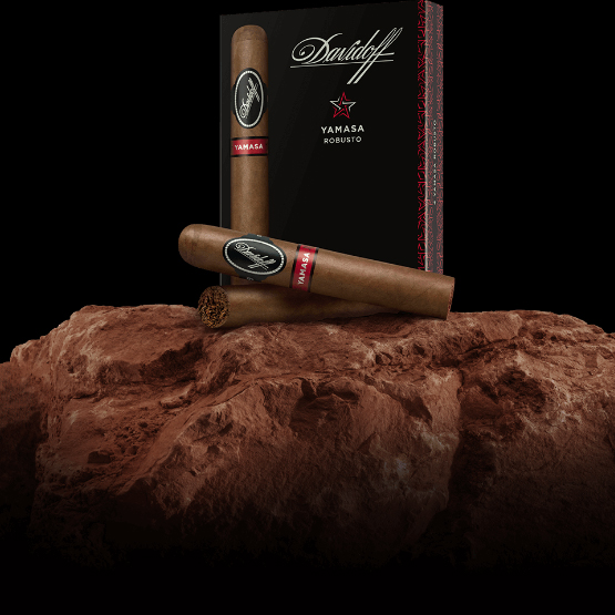 Davidoff Yamasa cigar uk
