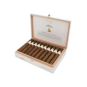 Davidoff Winston Churchill Robusto - The Statesman Cigar