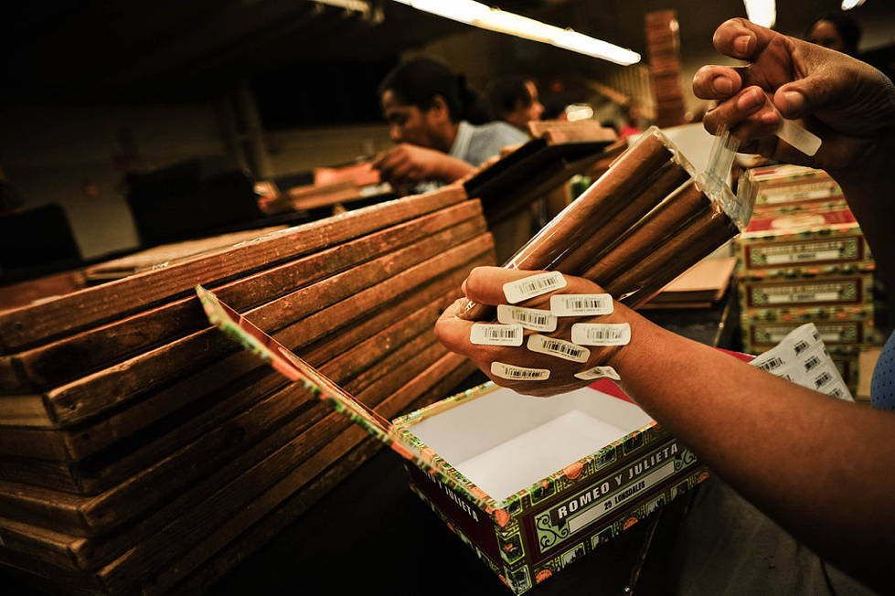 Handmade cigars being checked