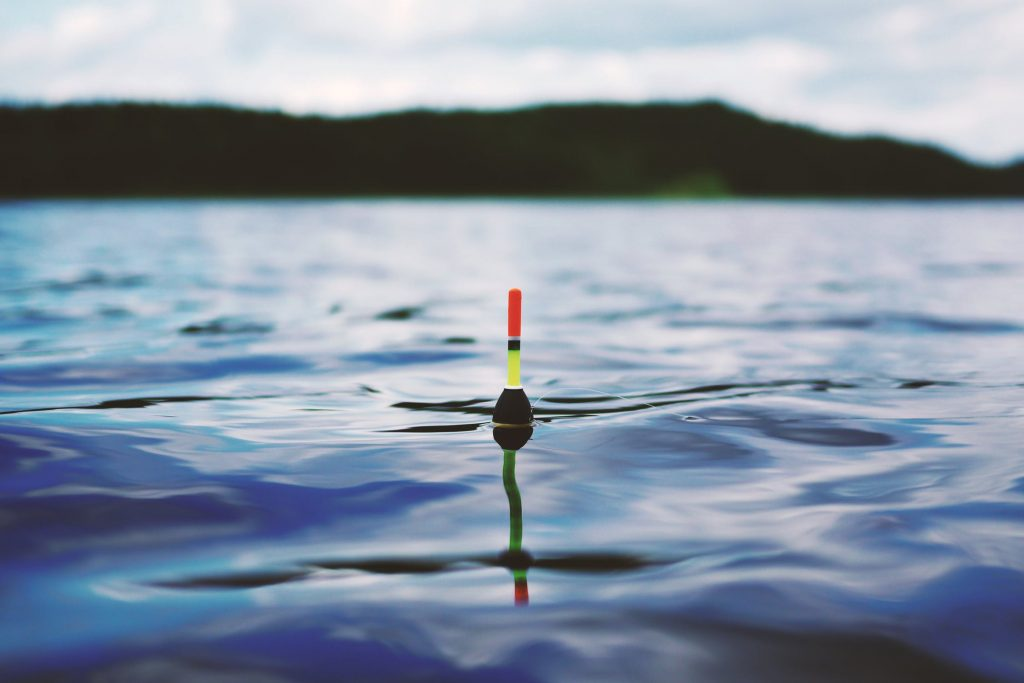 A fishing weight floating on the surface of a lake