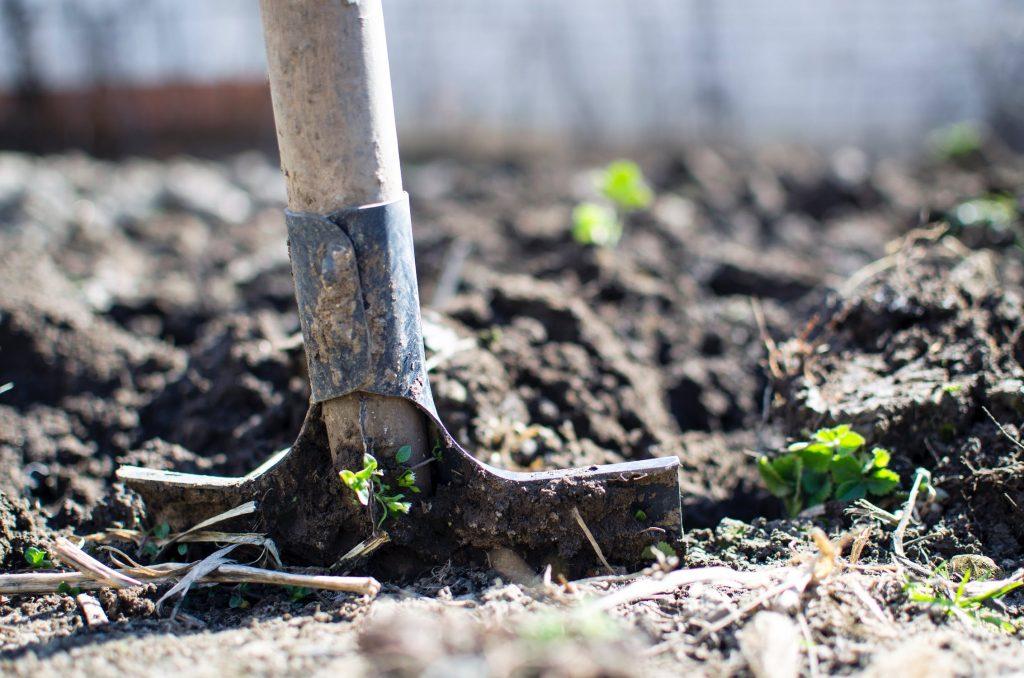 A gardening spade dug into soil