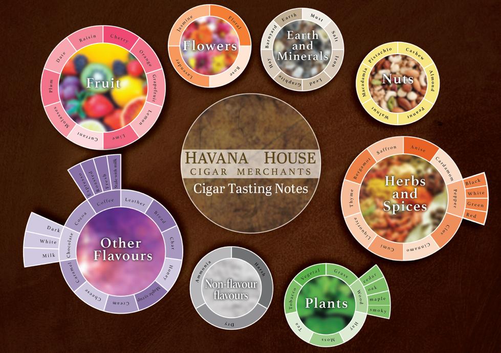 Cigar tasting notes flavour wheel