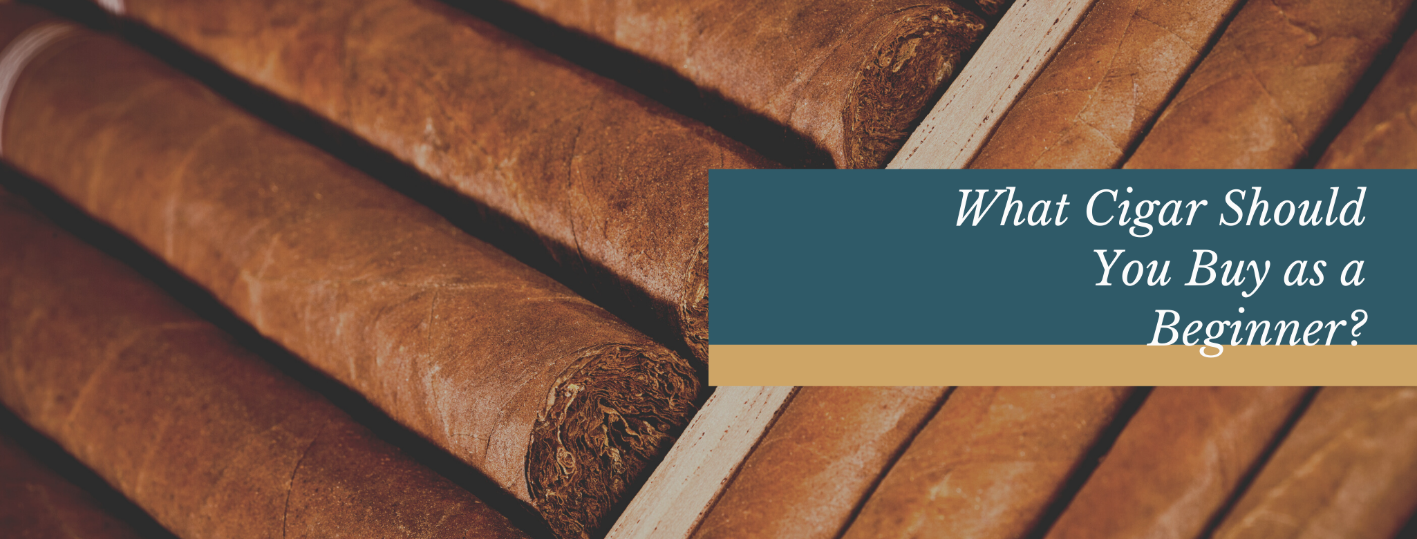 Reads: What Cigar Should You Buy as  a Beginner?
