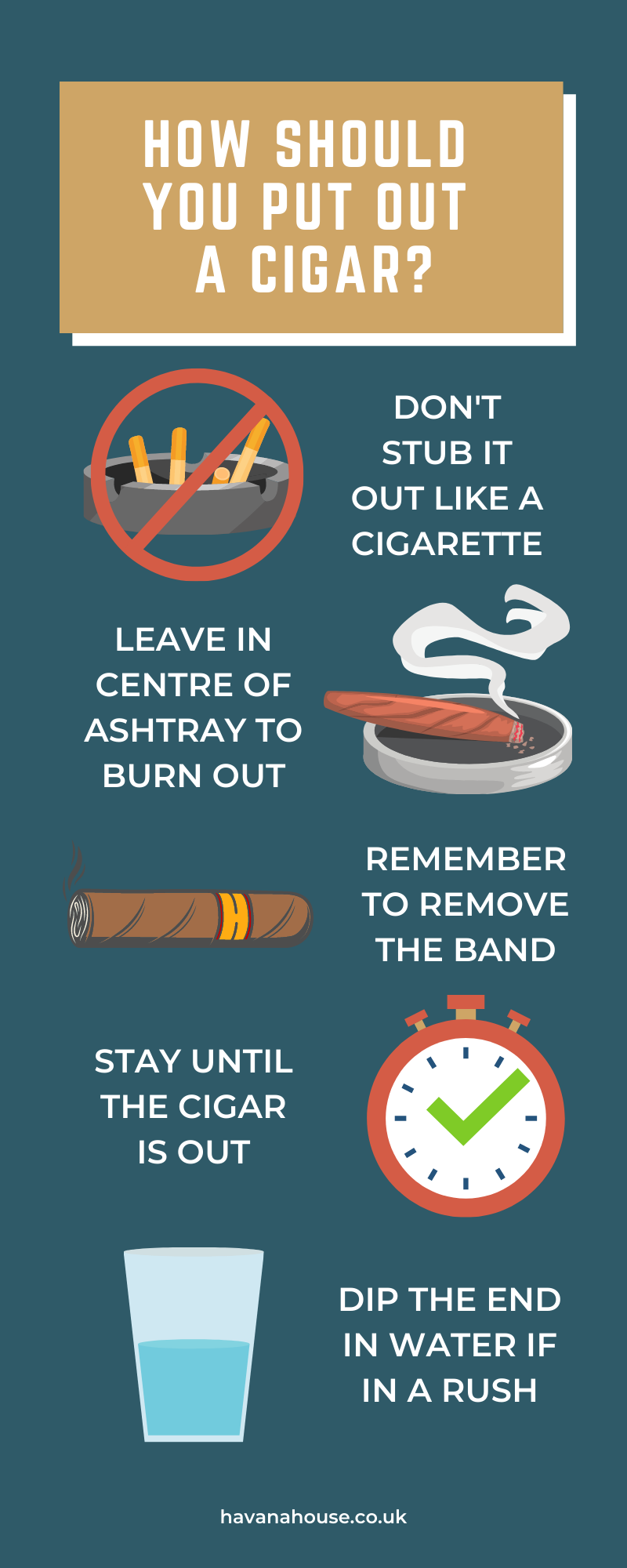 How Should I Put Out a Cigar Infographic by Havana House