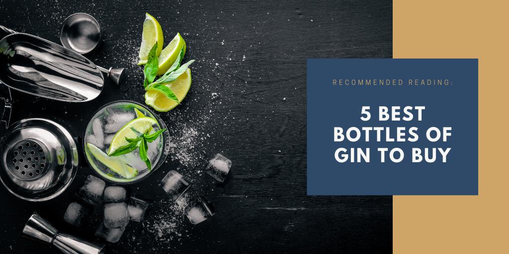 5 Best bottles of gin to buy