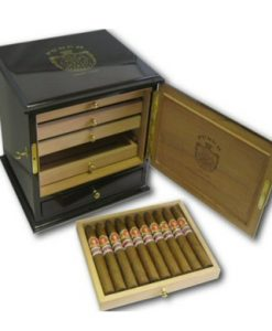 Punch Serie D Oro No.1 Humidor